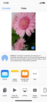 Apple iPhone X - Red - Uso de la camára - Paso 12