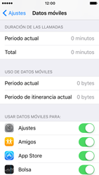 Apple iPhone 5s iOS 10 - Internet - Ver uso de datos - Paso 4