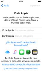 Apple iPhone SE - iOS 11 - Primeros pasos - Activar el equipo - Paso 17