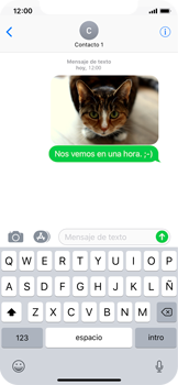Apple iPhone X - MMS - Escribir y enviar un mensaje multimedia - Paso 16