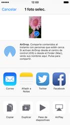Apple iPhone SE - Red - Uso de la camára - Paso 10