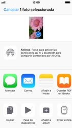 Apple iPhone 5s - iOS 11 - Red - Uso de la camára - Paso 11
