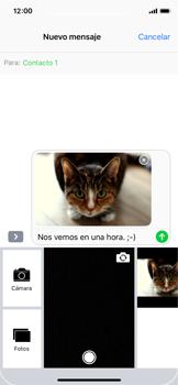 Apple iPhone X - MMS - Escribir y enviar un mensaje multimedia - Paso 15