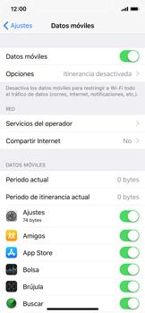 Apple iPhone X - Internet - Ver uso de datos - Paso 4