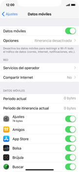 Apple iPhone X - Internet - Configurar Internet - Paso 5