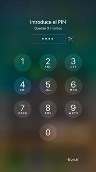 Apple iPhone 8 Plus - Internet - Configurar Internet - Paso 17