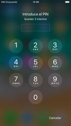 Apple iPhone 6s iOS 11 - MMS - Configurar el equipo para mensajes multimedia - Paso 16