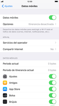 Apple iPhone 7 Plus iOS 11 - Internet - Ver uso de datos - Paso 4