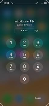 Apple iPhone X - MMS - Configurar el equipo para mensajes multimedia - Paso 17