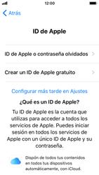 Apple iPhone 5s - iOS 11 - Primeros pasos - Activar el equipo - Paso 18