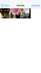 Apple iPhone 5s iOS 10 - MMS - Escribir y enviar un mensaje multimedia - Paso 13