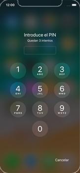 Apple iPhone X - MMS - Configurar el equipo para mensajes multimedia - Paso 16