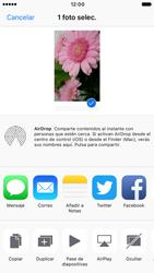 Apple iPhone 6s iOS 10 - Red - Uso de la camára - Paso 10