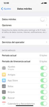Apple iPhone X - Internet - Activar o desactivar la conexión de datos - Paso 5