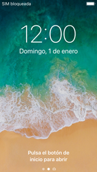 Apple iPhone 5s - iOS 11 - Internet - Configurar Internet - Paso 14