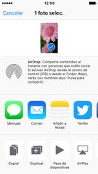 Apple iPhone SE - iOS 10 - Red - Uso de la camára - Paso 10