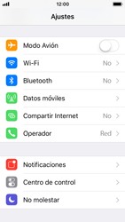 Apple iPhone 5s - iOS 11 - Internet - Activar o desactivar la conexión de datos - Paso 3
